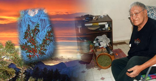 Shelby's interpretation of Sweet Pine in pastel on the left and ceremonialist Harrison Wolf Child sitting by his altar and his dish of Alpine Fir needles on the right.