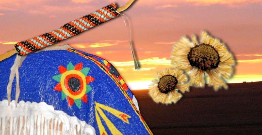The Common Gaillardia is a popular decoration for clothing and beadwork. (Glenbow Museum. (2005). Nitsitapiisinni Exhibit. Calgary, Alberta: Blackfoot Gallery Committee.)