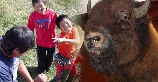 """Locoweed is believed to make the cows and horses go crazy. We can see that Japheth and Bryton are both acting """"loco"""" or crazy."""
