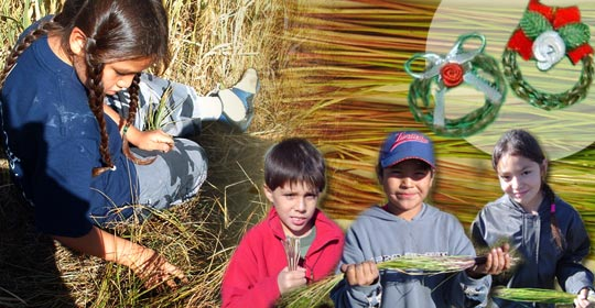 Marvin picking Sweetgrass. Noah, Japheth and Laney holding Sweetgrass bundles.