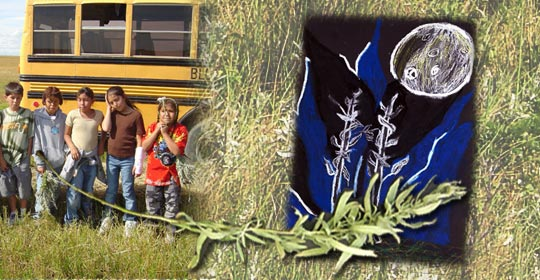 Kainai kids pose for the camera after picking Louisiana Sagewort in its natural environment. Fresh Sagewort in the foreground and a pastel drawing in the background.