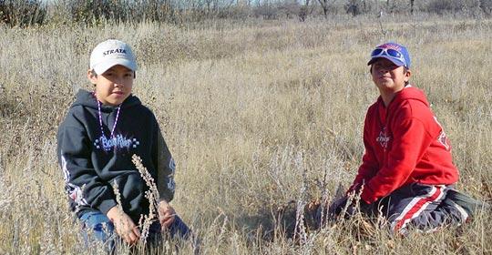 Shelby and Japheth picking Pasture Sagewort.