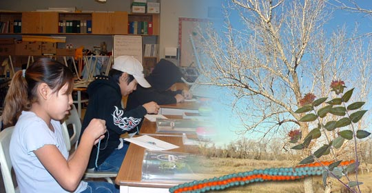 Students Sommer, Shelby and Japheth concentrate on beadwork. Wild Bergamot can often be found around Aspen Poplar groves.