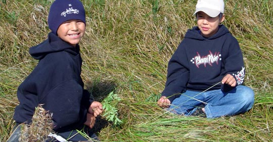 Japheth and Shelby collecting Mint in the wet prairie.