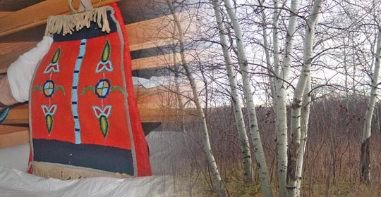 A decorative art piece from the Glenbow Museum. Yampa can often be found in areas where the Poplar trees grow. (Glenbow Museum. (2005). Nitsitapiisinni Exhibit. Calgary, Alberta: Blackfoot Gallery Committee)